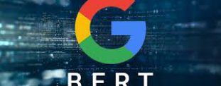 """What is Google BERT Update and How Will It Affect Your Website Rankings?"""